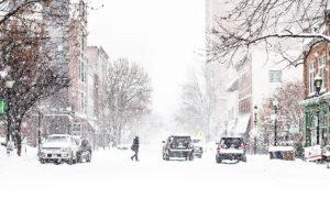 Forfora d'inverno